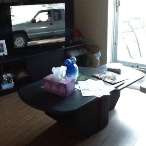 Meuble de salon et table de salon couleur noir