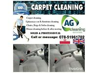 cleaning upholstery carpets ect ...
