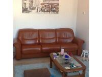 Ekornes Ltd Stressless Liberty Low Back leather sofa. Paloma leather, brandy colour, teak finish.