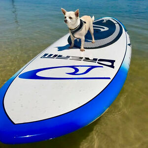 """7Seas Stand Up Paddle Board - 9'6"""", 10', 10'6"""" and 12' SUP NEW! Tweed Heads South Tweed Heads Area Preview"""