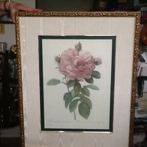 Pictures in frames (roses) Peterborough Peterborough Area image 1