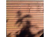 Fence Panel 6x6