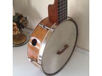alvin keech banjolele .original calf skin .aquilla strings mint condition