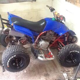 Quadzilla 250cc