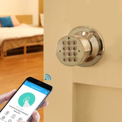 Keyless WiFi Security Doorknob Bluetooth Smart Lock  Handles & Electronic Keypad