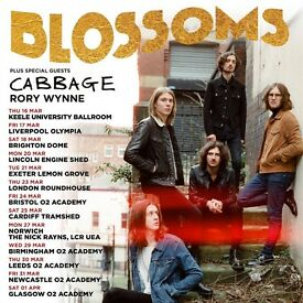 4 x standing tickets Blossoms Friday 31st March O2 Academy, Newcastle
