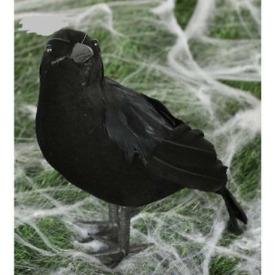 Crow 25cm Black Maleficent Feathered Feather Bird Halloween Decoration Prop