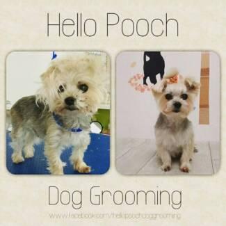 Hello Pooch Dog Grooming (Westside Dog Grooming) Laverton Wyndham Area Preview