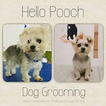 Hello Pooch Dog Grooming (Westside Dog Grooming) Wyndham Area Preview