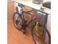 Big bike for tall person£50 can deliver for petrol