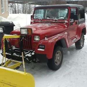 1994 Jeep edition renegate avec moulure plastic