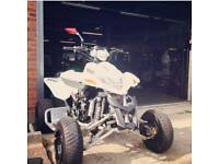 Quadzilla conversion 600cc