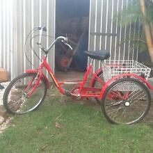 Indi Rambler Tricycle Marsden Logan Area Preview