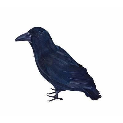 Blackbird Stuffed Feather Maleficent  Raven Halloween Crow Bird Fancy Dress Prop