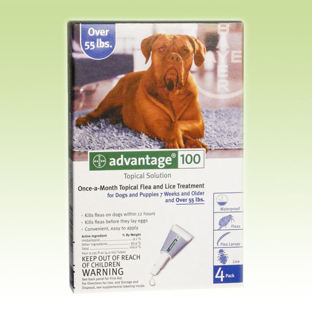 Advantage Blue For XL Dogs Over 55 lbs 4 Pack