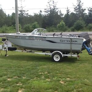 19ft Springbok boat motor and trailer
