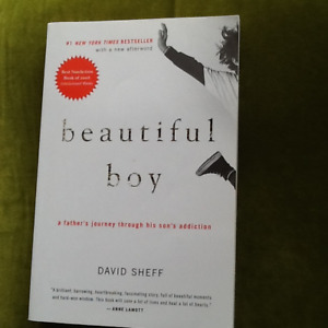 Beautiful Boy: A Father's Journey Through his son Addiction