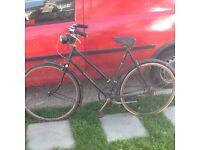 Raleigh sports 2030 bike