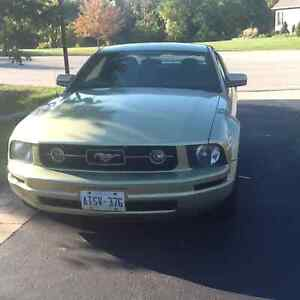 2006 Ford Mustang Green Coupe (2 door)