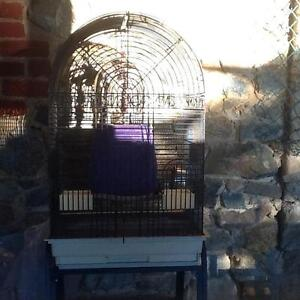 Cages for cockies and budgies Gooseberry Hill Kalamunda Area Preview