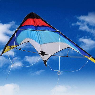 Large Dual Two 2  Line Control Delta Sport Stunt kite Pro Boys Gift Pro