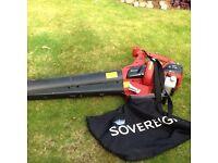 Petrol leaf blower vac