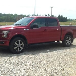 2016 Ford F-150 SuperCrew XLT Sport Ruby Red