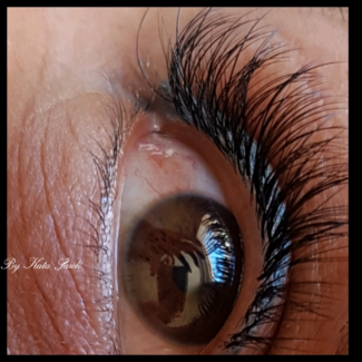 Lashes by Kate
