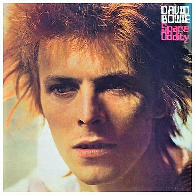 David Bowie  *VERY LARGE POSTER* Ziggy Space Oddity - Album Cover - AMAZING PIC
