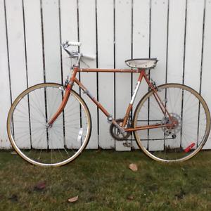 Adult orange  cruiser bike