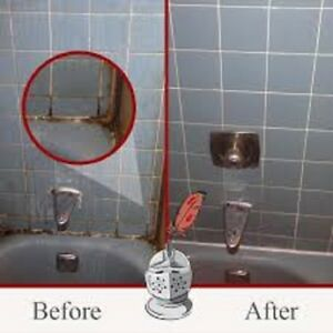 PROFESSIONAL AND TOP RESULT DETAIL CLEANERS.289 274 4851