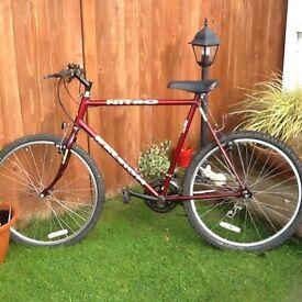 Men's Raleigh Nitro. Bike