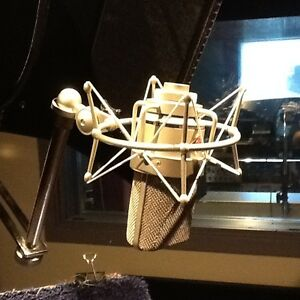 Neumann TLM 103 with Case and Neumann shockmount as new.