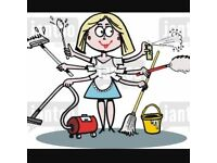 Domestic cleaner: are you looking for a cleaner.... Look no further!!