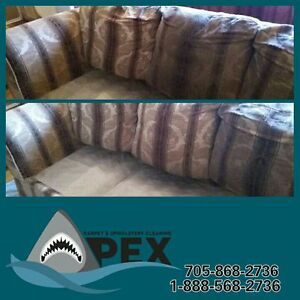 Apex Carpet and Upholstery Cleaning Kawartha Lakes Peterborough Area image 4