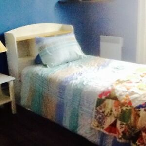 Large downtown furnished room for rent Nov. 1st