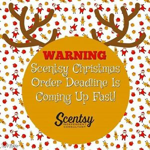 Need Scentsy for Christmas?