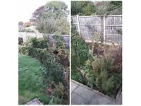 cutting Hedge garden services, uniformed staff, petrol tools all garden rubbish taken away