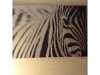 Zebra motif IKEA canvas