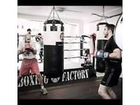 12 ft boxing ring
