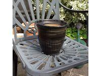 Various garden/interior plant pots