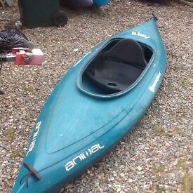 Kiwi Perception canoe /kayak