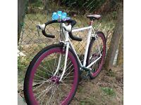 Adult single speed fixed gear lightweight aluminium frame bike very good working condition