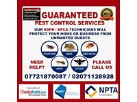 Pest Control-Get rid of Bed Bugs, Cockroaches, Mice-Stratford, Ilford, Dagenham,Plaistow,Walthamstow