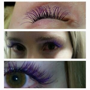 Christmas Special Full Set Of Synthetic Eyelashes $60 Kitchener / Waterloo Kitchener Area image 1
