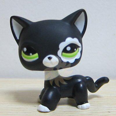 Hasbro Littlest Pet Shop Collection LPS Shorthair White Black Kitty Cat Rare