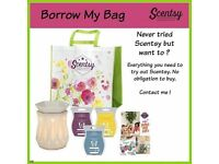 Scentsy borrow bags! Try for free!