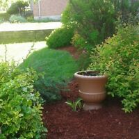 Fall GARDEN Cleanup Services!! Book Now!!!
