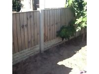 3x6 Feather Edge Fencing Panels(14)