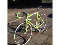 Pinarello Monviso Racing Cycle - unused, as new!